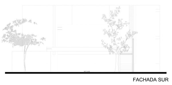 casa-arboles-015